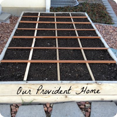 Garden box with grid